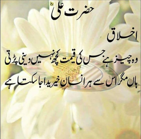 20 Inspirational Islamic Quotes In Urdu Folder