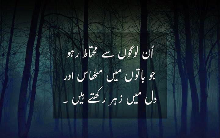 20 Inspirational Quotes On Life In Urdu Folder